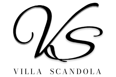 logovs2021 TRANS